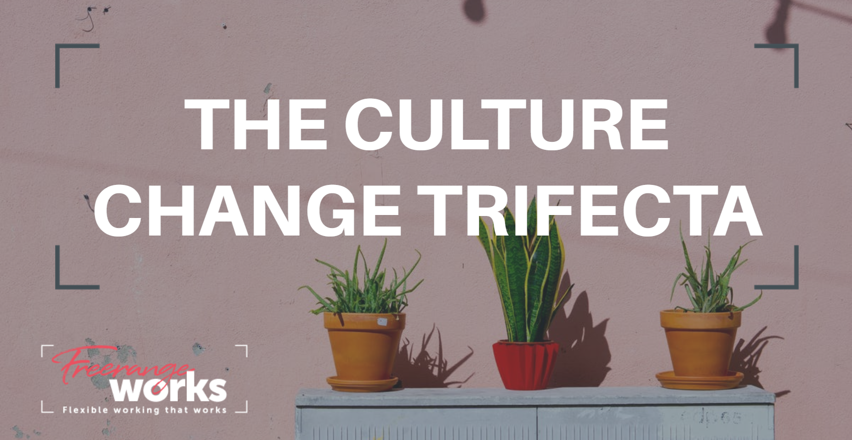 The Culture Change Trifecta